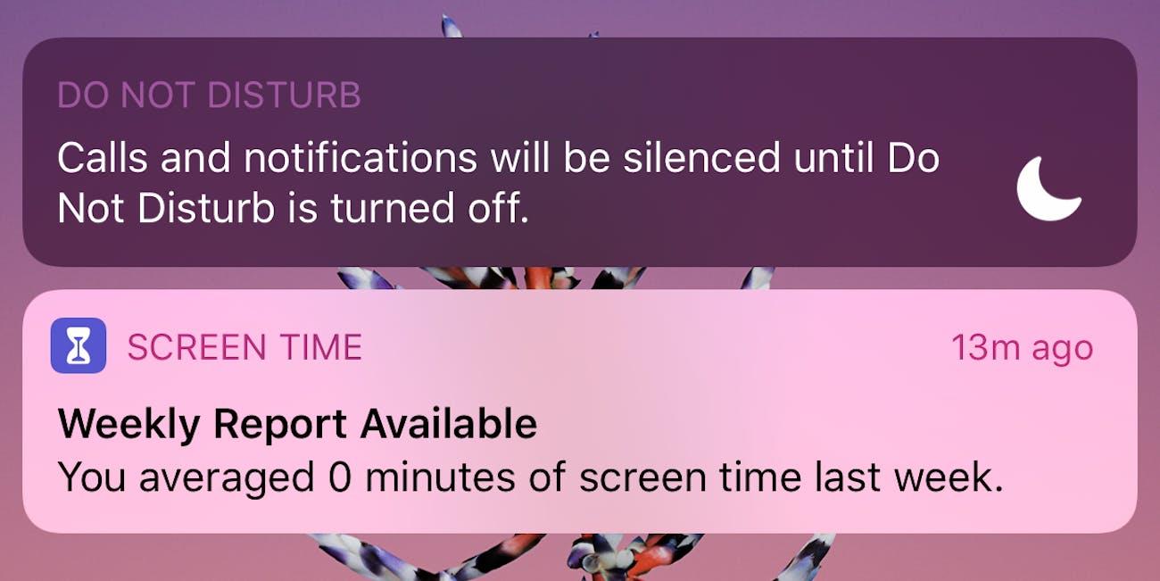 iOS 12 Screen Time screenshot inaccurate.