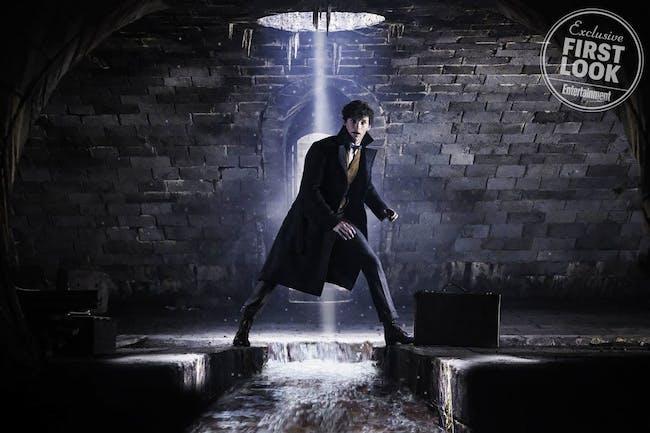 Newt's back at it again traipsing through the underground.