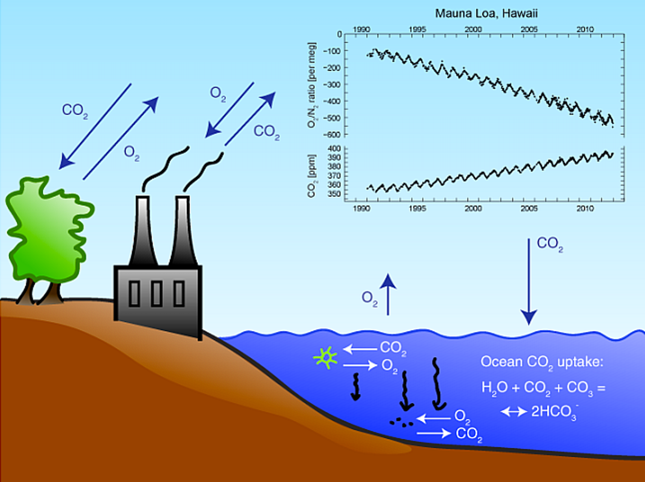 Measurements from Mauna Loa, Hawaii, show changes in atmospheric oxygen and carbon dioxide since 1990.