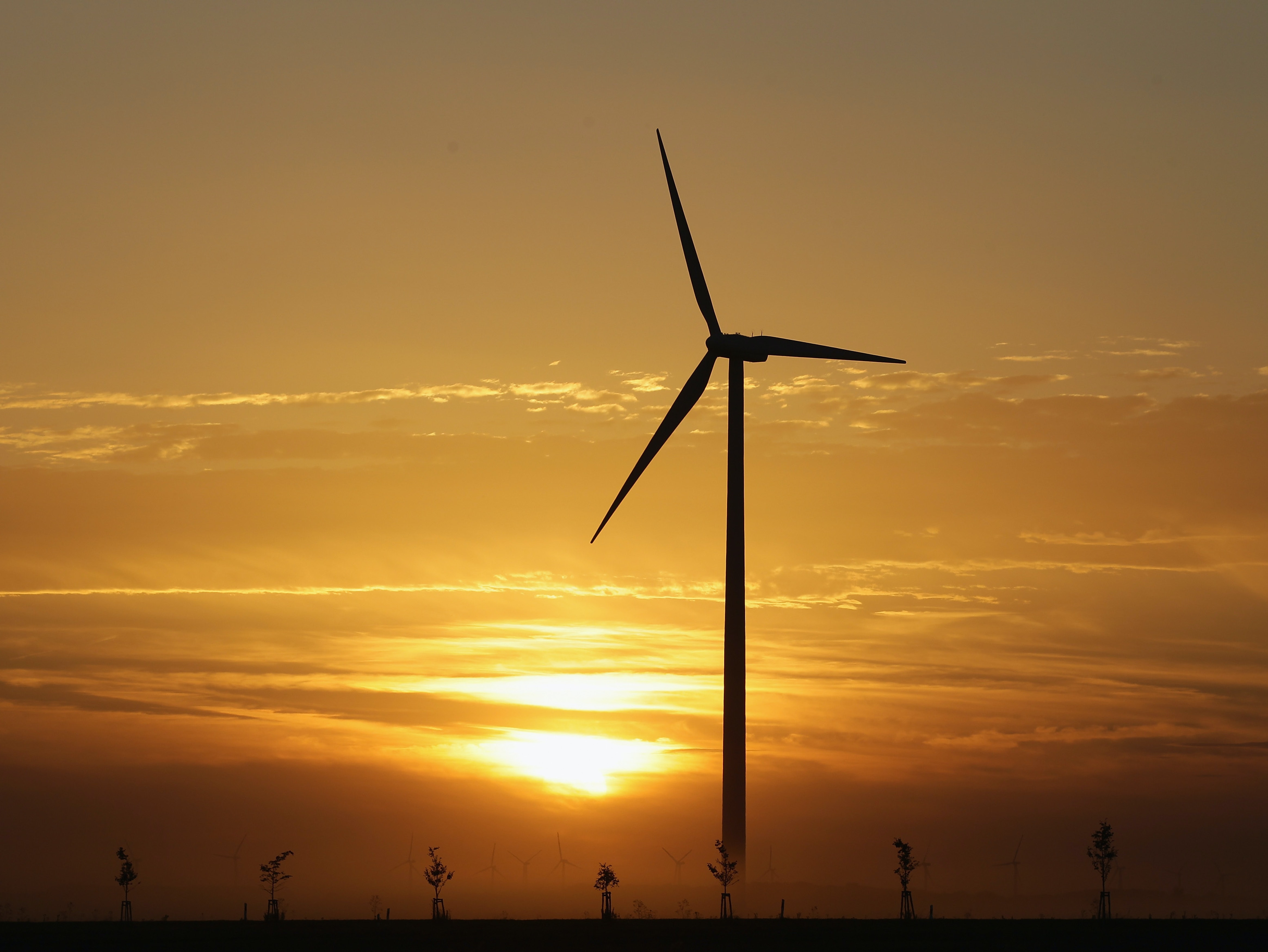 A wind turbine at sunset is pictured on August 20, 2010 in Roedgen near Bitterfeld, Germany. Germany is investing heavily in renewable energy production, including wind power and solar, and is seeking to produce 30% of its electricity nationwide with renewables by 2020.