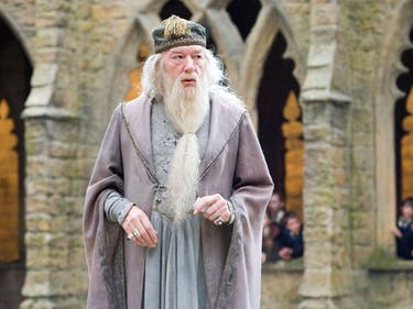 'Harry Potter' From Dumbledore's Perspective Is Hilariously Dark