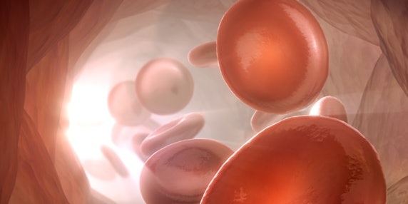 polygon-medical-animation-red-blood-cells