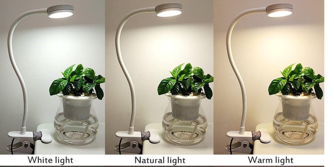 reading light, Amazon, clip-on light