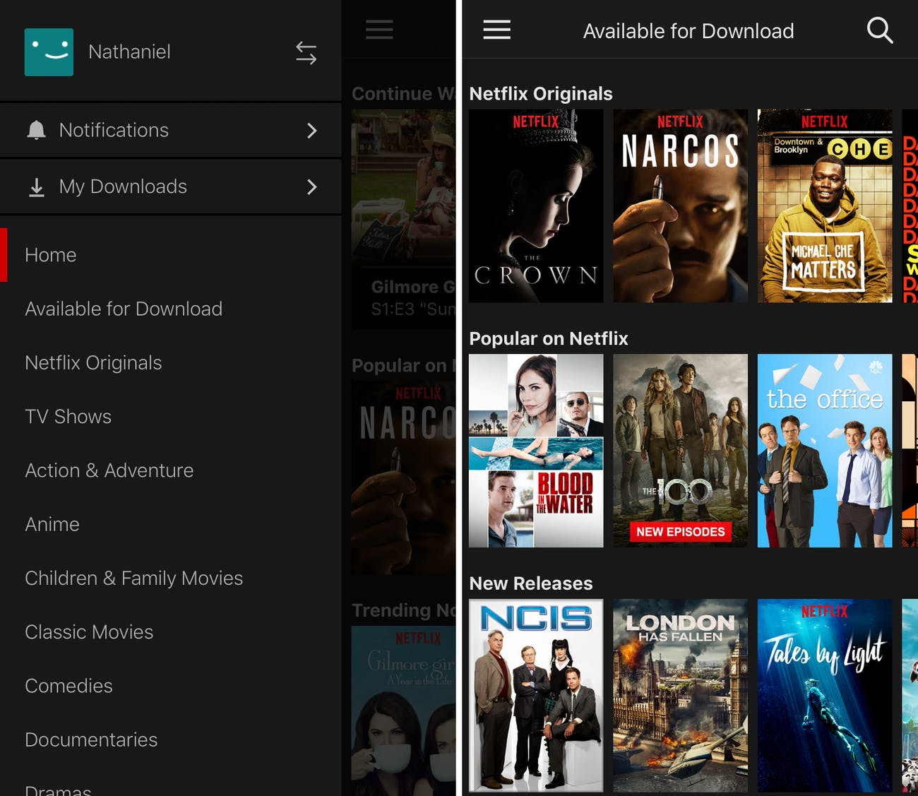 How to See All the Netflix Shows Available for Download