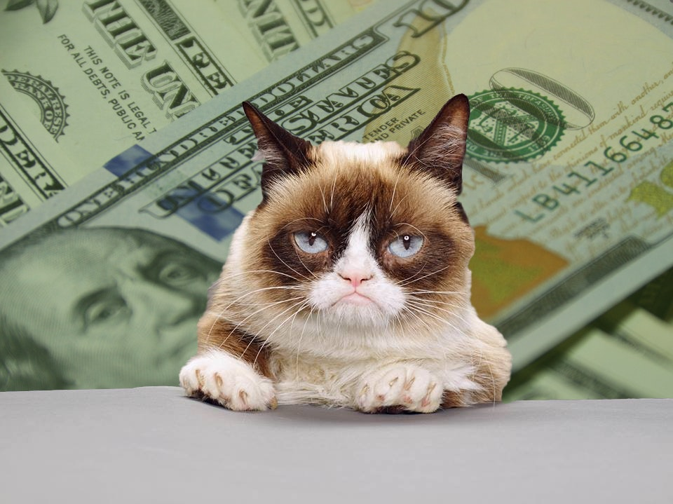 Image of: Realgrumpycat Tardar Sauce Aka Grumpy Cat With Money Know Your Meme Grumpy Cats Net Worth Just Grew 710000 Over Copyright Lawsuit