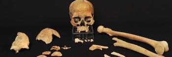 ancient skulls Scandinavia
