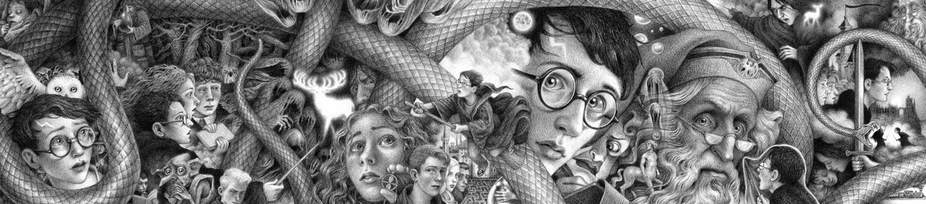 Harry Potter 20th anniversary cover art