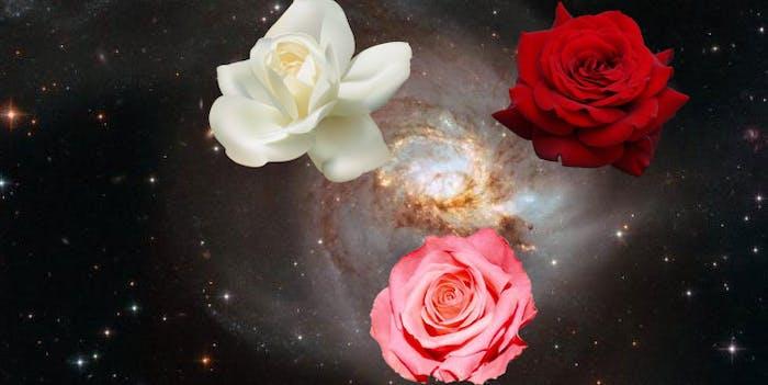 galaxy merger cosmic rose nasa
