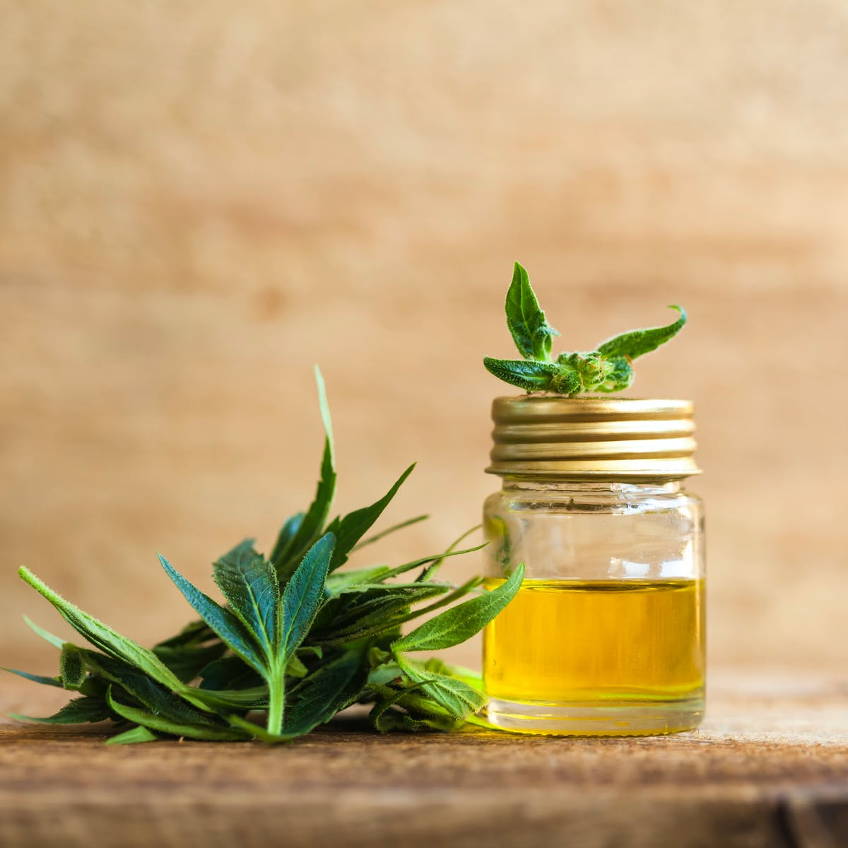 "Is there a ""Goldilocks Zone"" for CBD? What one study showed is promising"