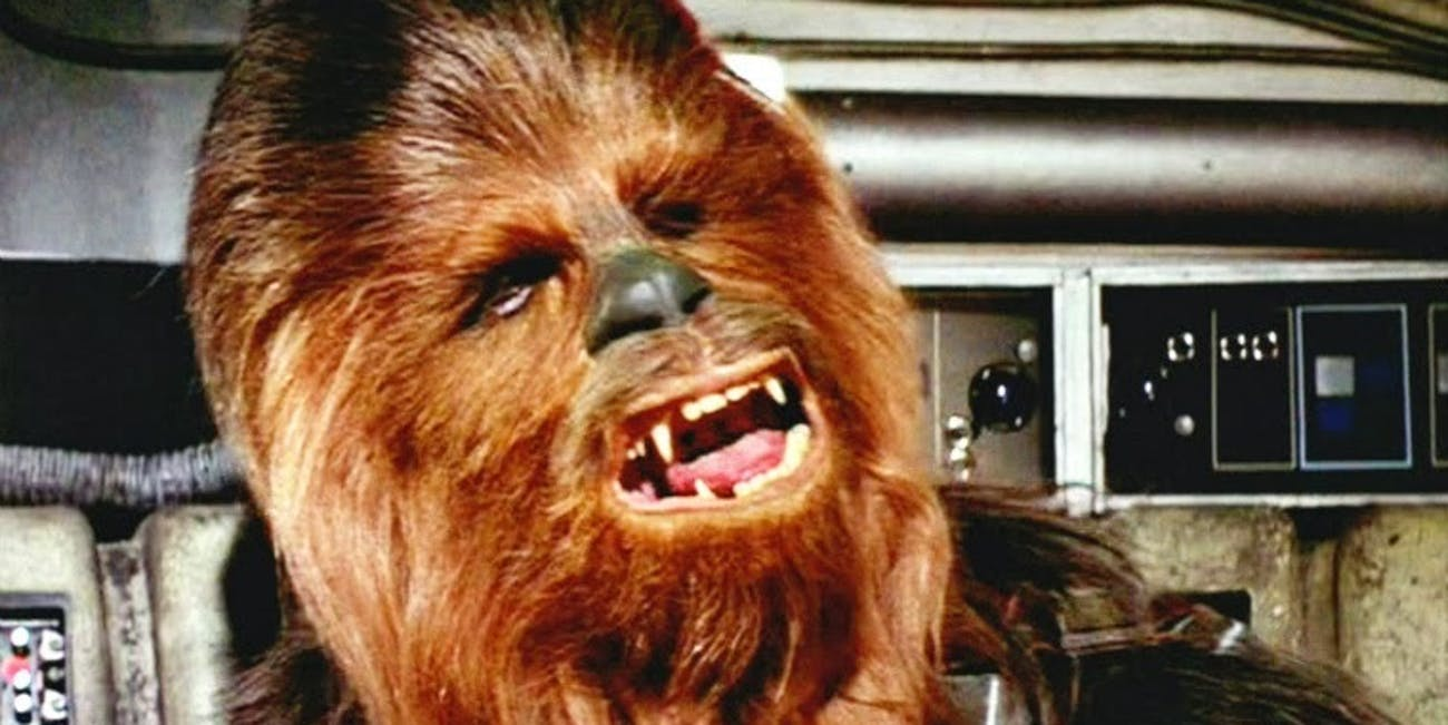 Leia and Chewbacca in 'Star Wars: The Force Awakens'