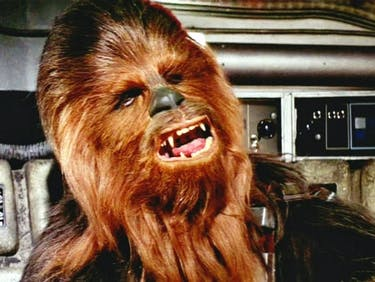 Chewbacca Really Wanted a Hug in 'Star Wars: The Force Awakens'
