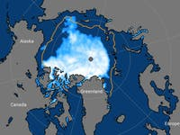 arctic sea ice levels