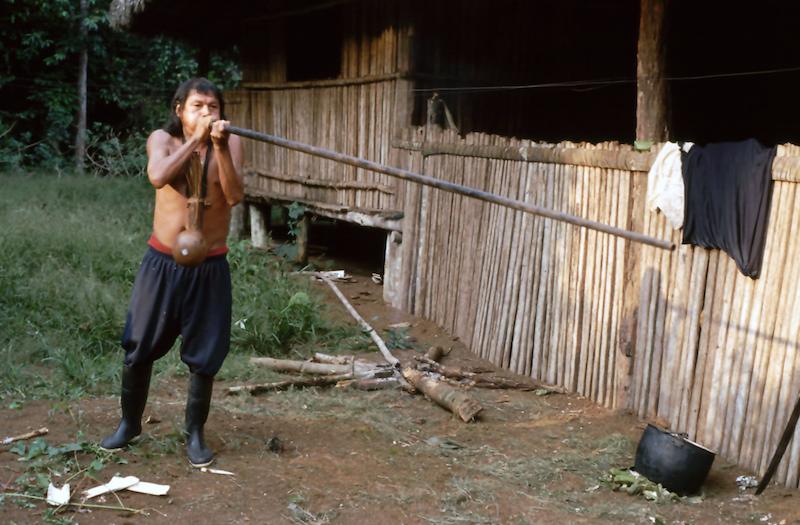 An Achuar Tribesman with a blowgun.