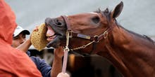 The Kentucky Derby and Technology: 8 Interesting Facts