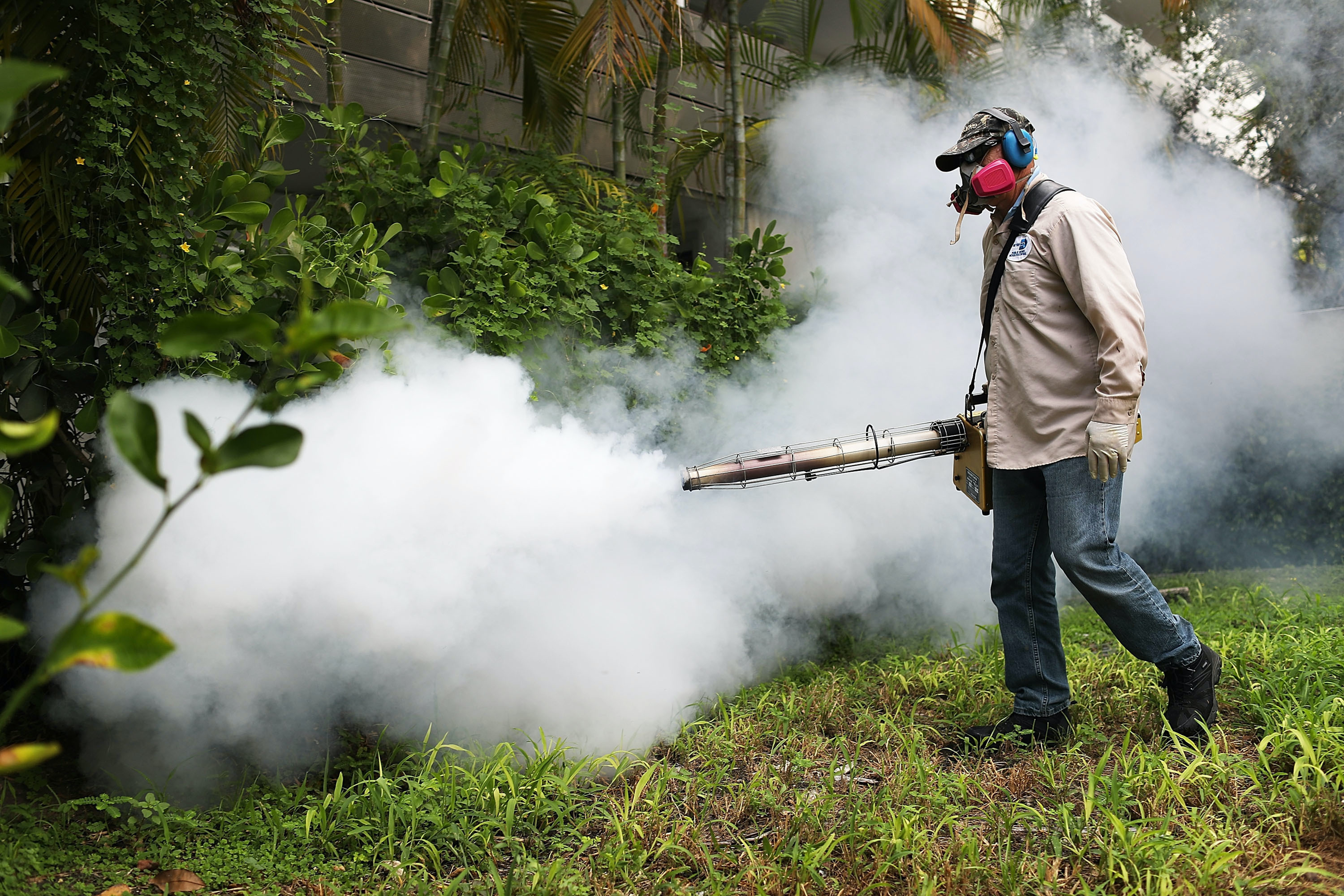 Carlos Varas, a Miami-Dade County mosquito control inspector, uses a Golden Eagle blower to spray pesticide to kill mosquitos in the Miami Beach neighborhood as the county fights to control the Zika virus outbreak on August 24.