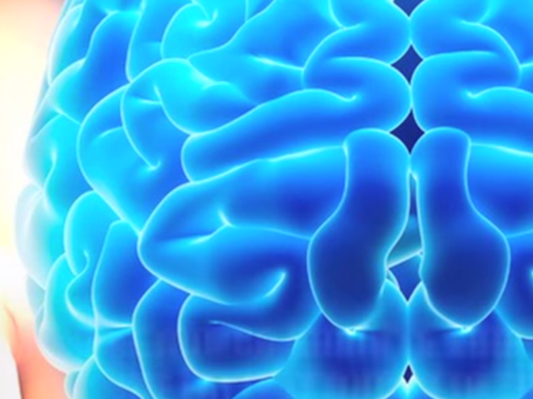 Please Don't Let Eating Human Brains Become a Health Fad