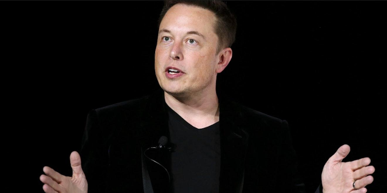 Elon Musk says Donald Trump sucks