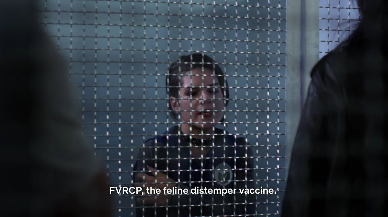 Jessica Jones Netflix Feline Vaccine