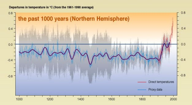 """This version of Michael Mann's """"hockey stick"""" graph appears in a report of the Intergovernmental Panel on Climate Change."""