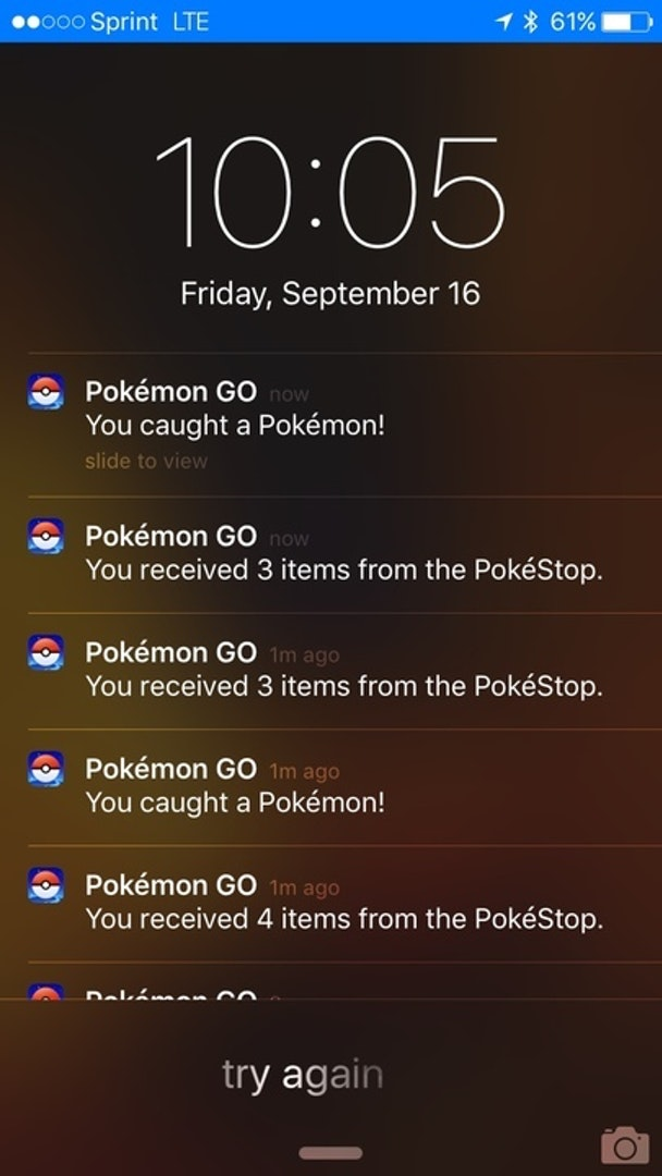 Notifications for the app