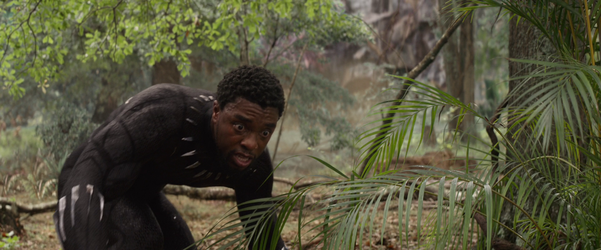 Black Panther 2': Sequel Confirmed, So T'Challa Comes Back