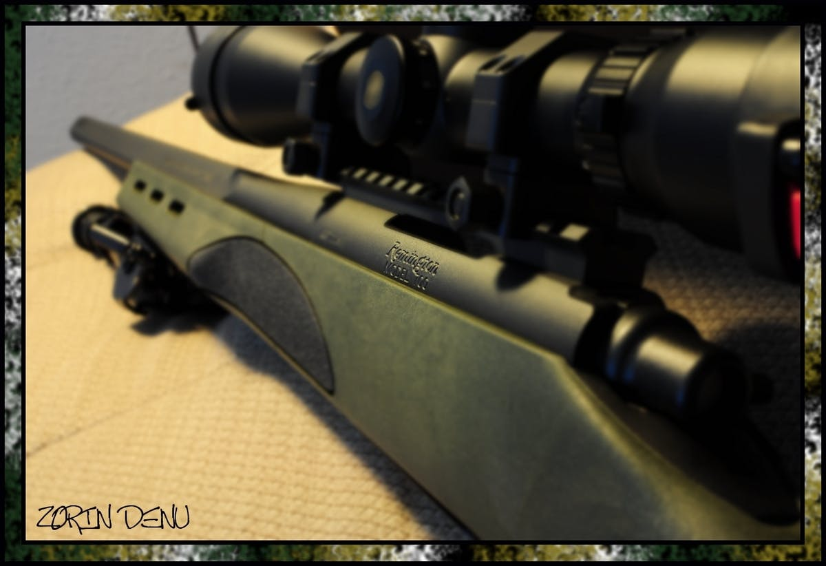 #25/365 Remington 700