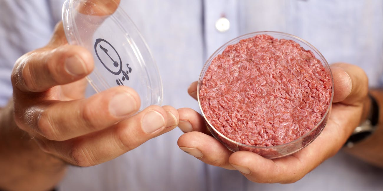 Lab-Grown Meat: Beyond Burgers, Seven In-Vitro Foods Coming to Plates