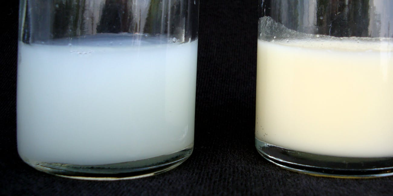 Drinking Human Breast Milk Can Give You Stds  Inverse-4648