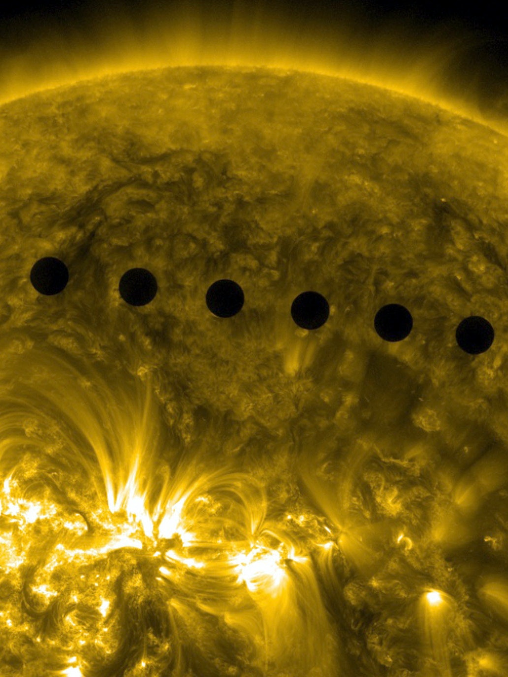 The path sequence of the transit of Venus across the face of the sun.