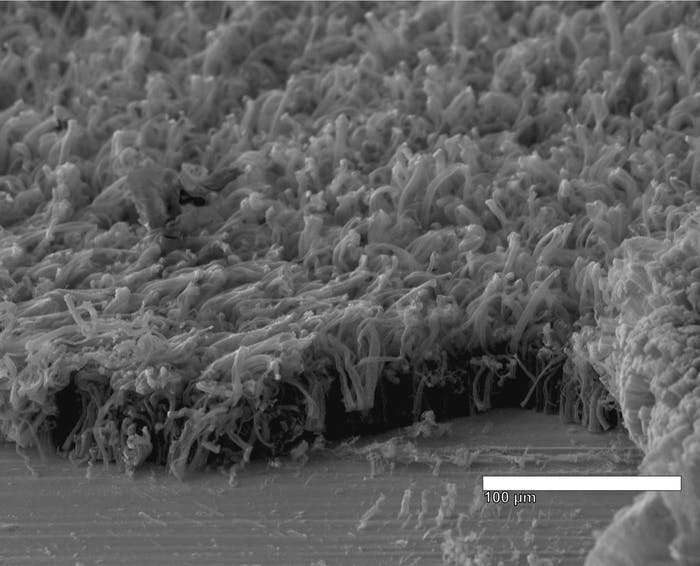 carbon nanotube evenly coated with lithium metal