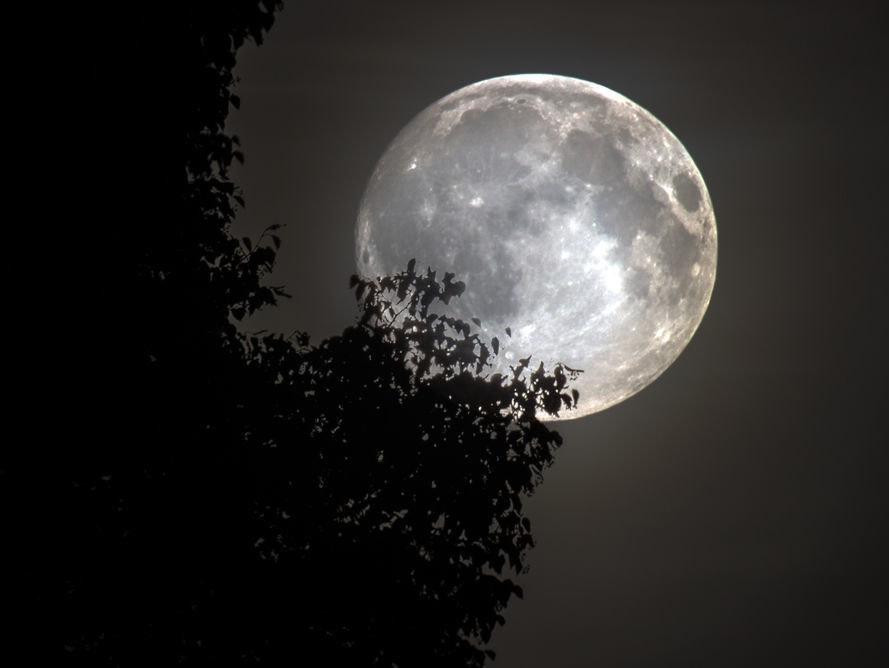 Enjoy the full moon's glow