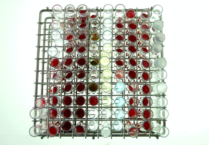 blood test tubes rack laboratory samples