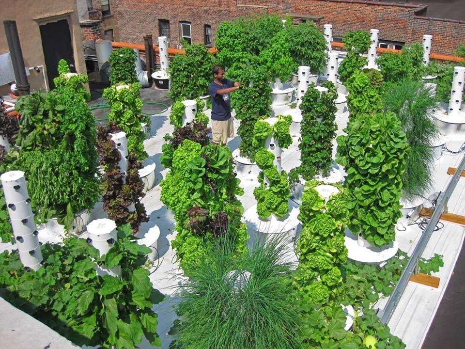Urban garden towers