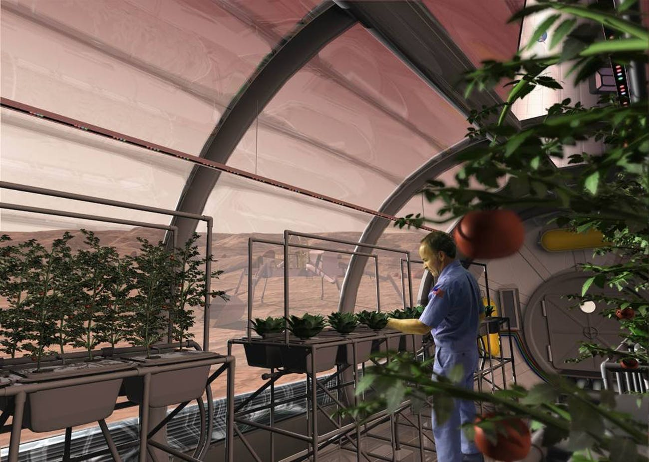 NASA's vision of hydroponics on Mars.