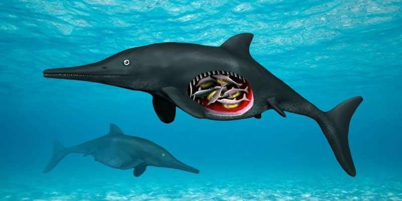 artist-rendition-of-the-pregnant-ichthyosaur.jpeg?rect=0%2C56%2C800%2C400&auto=format%2Ccompress&w=800