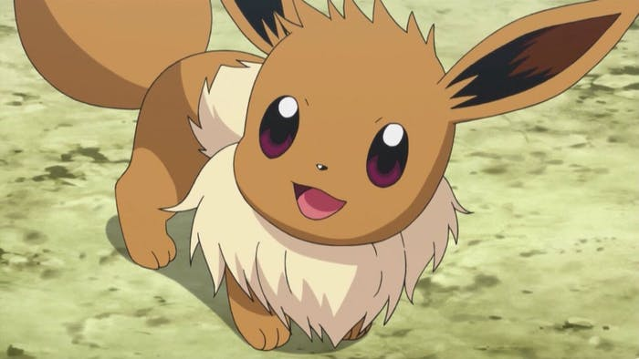 Eevee as it appears in the Pokémon anime.