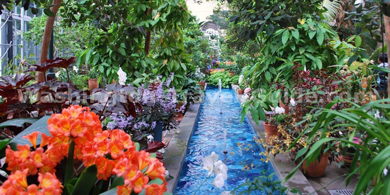 The United States Botanic Garden