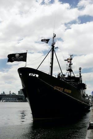How Sea Shepherd Keeps Japanese Whalers In Antarctica On