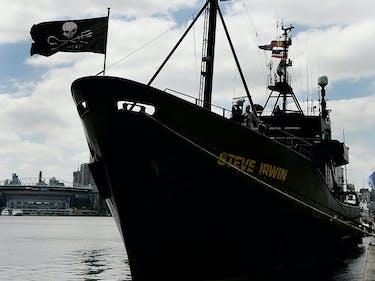 Sea Shepherd Prepares to Fight BP