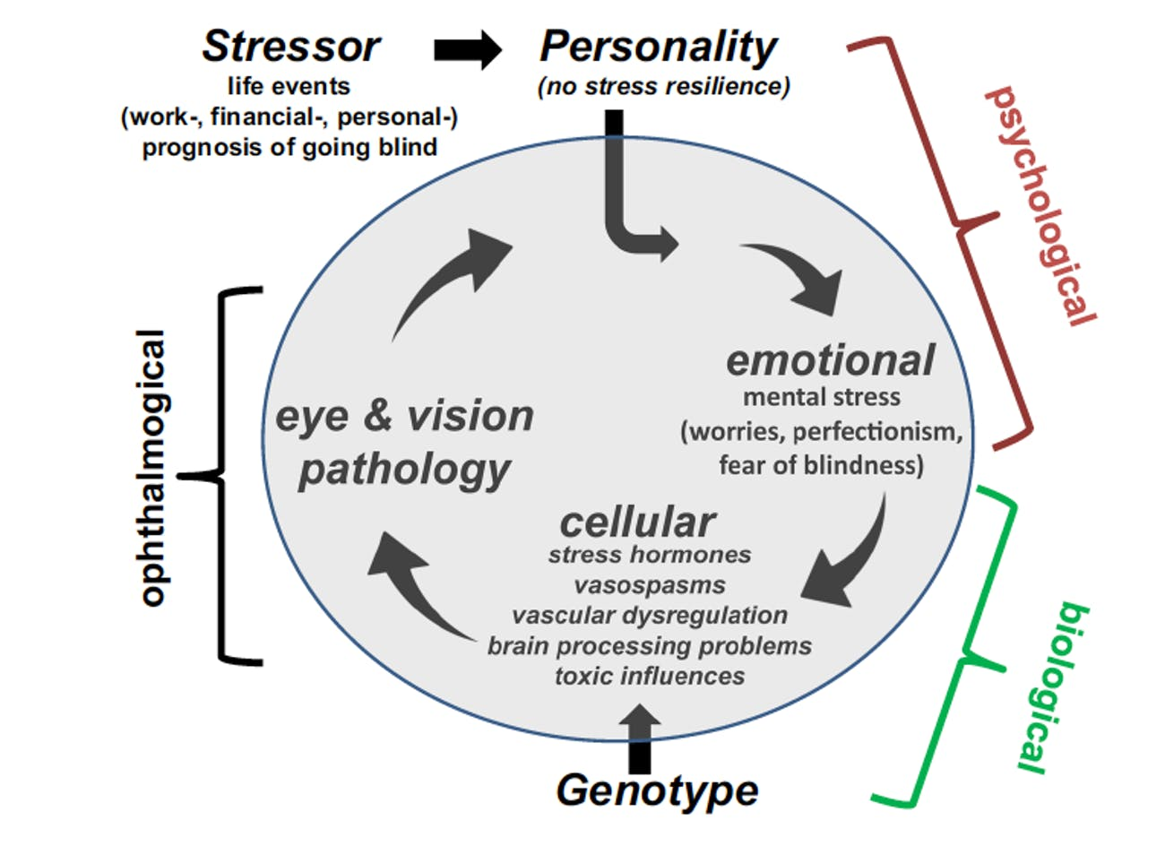 stress personality vision