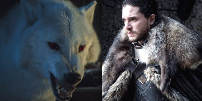 Ghost and Kit Harington as Jon Snow in 'Game of Thrones' Season 7