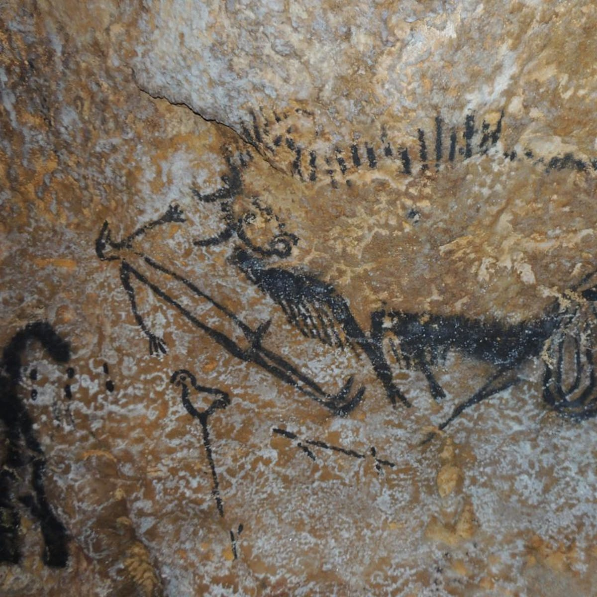"""Contentious Cave Art Study Claims """"Ancient Zodiac"""" Existed 40,000 Years Ago"""