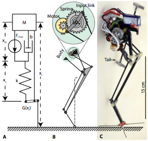 Power modulation modeled and instantiated. (A) Model of a powermodulating system with a series-elastic actuator and an MA element.(B) Linkage schematic for the robotic mechanism. (C) Photograph of an integrated robotic platform, Salto.