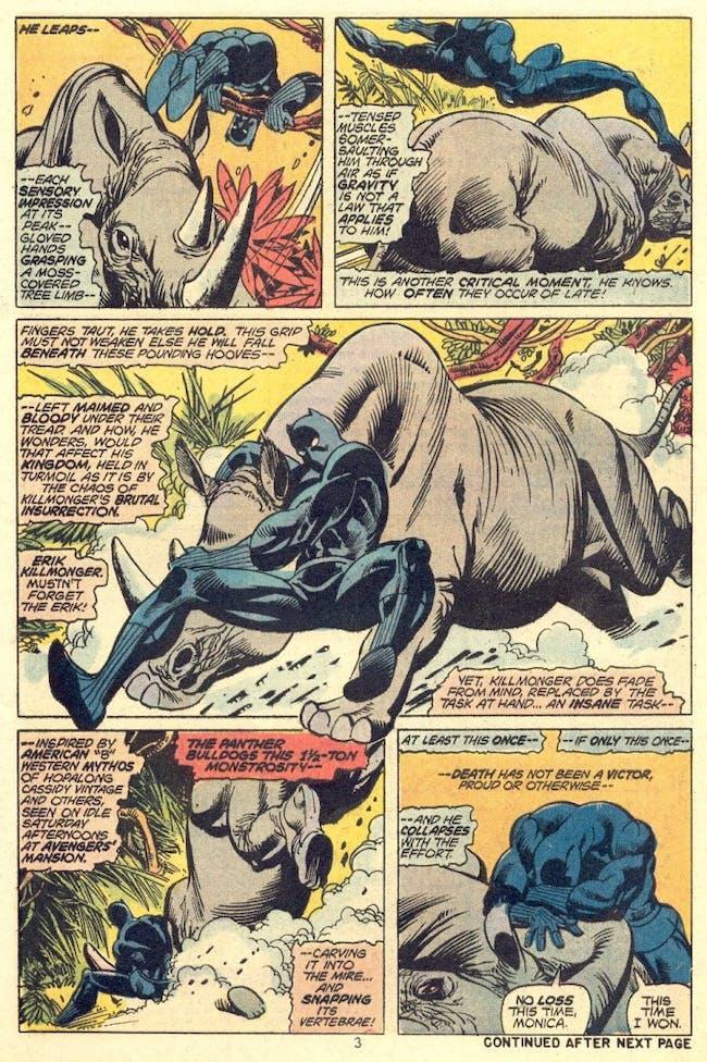 Black Panther Rhinos