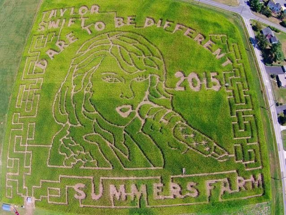 In 2015, Summer Farms created a corn maze dedicated to Taylor Swift.