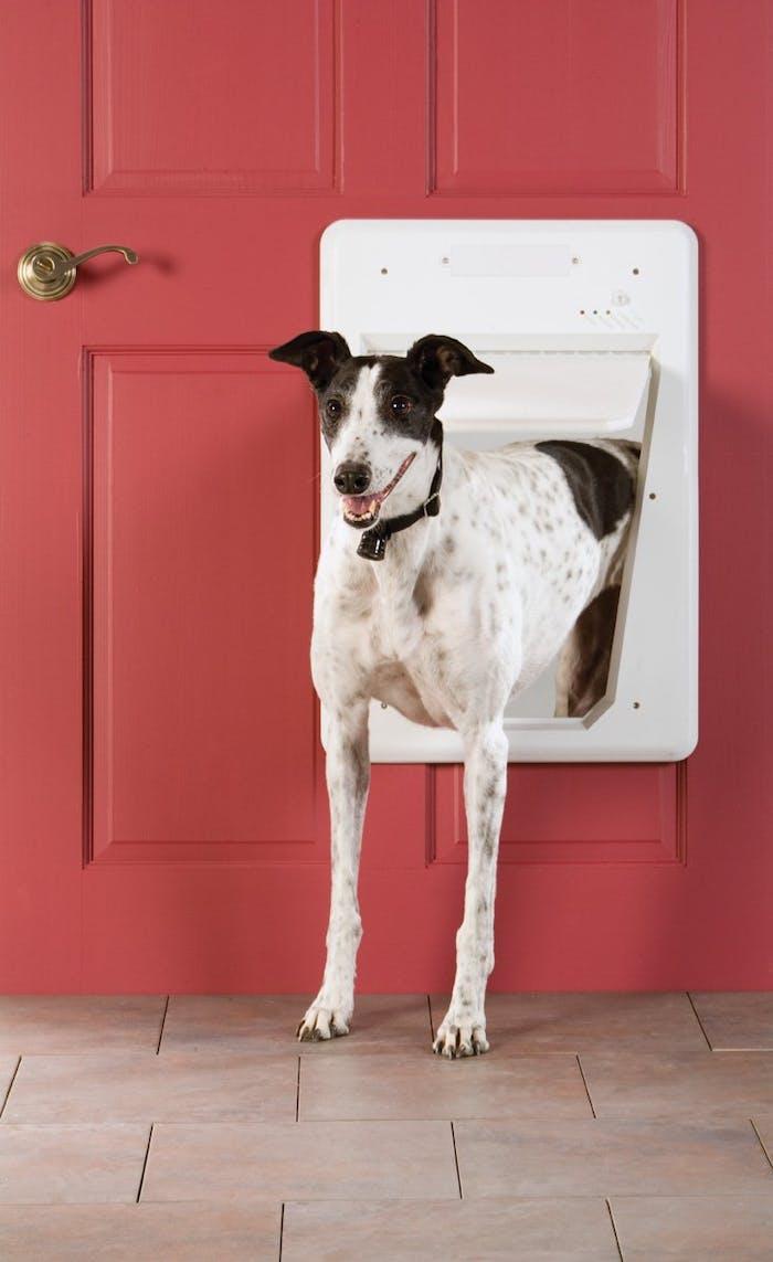 smart home pet, dog door, cat door, electronic pet door