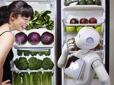 No Sex with Pepper: Contract Bans Coitus With Robot