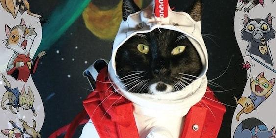 Valiant Comics Divinity USA Cat Cosplay Cover