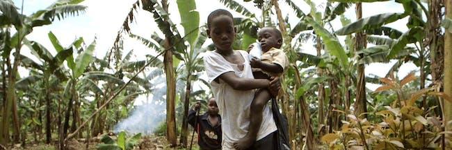 banana crops burning boys walking food evolution clip