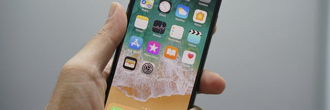 iPhone X home screen in hand